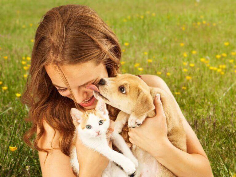 Katteunge och hundvalp i famnen på en kvinna