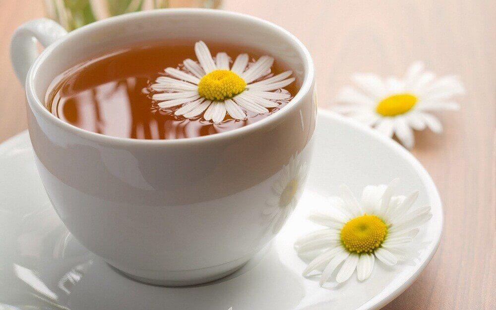 Te med kamomill kan bota hosta