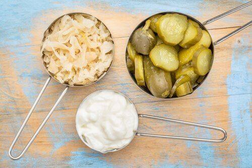 Fermenterade livsmedel