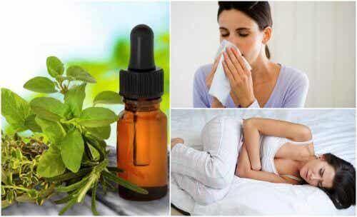 8 naturliga medicinska användningar för oreganoolja