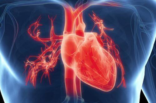 Visste du att för mycket arbete kan påverka hjärtat?