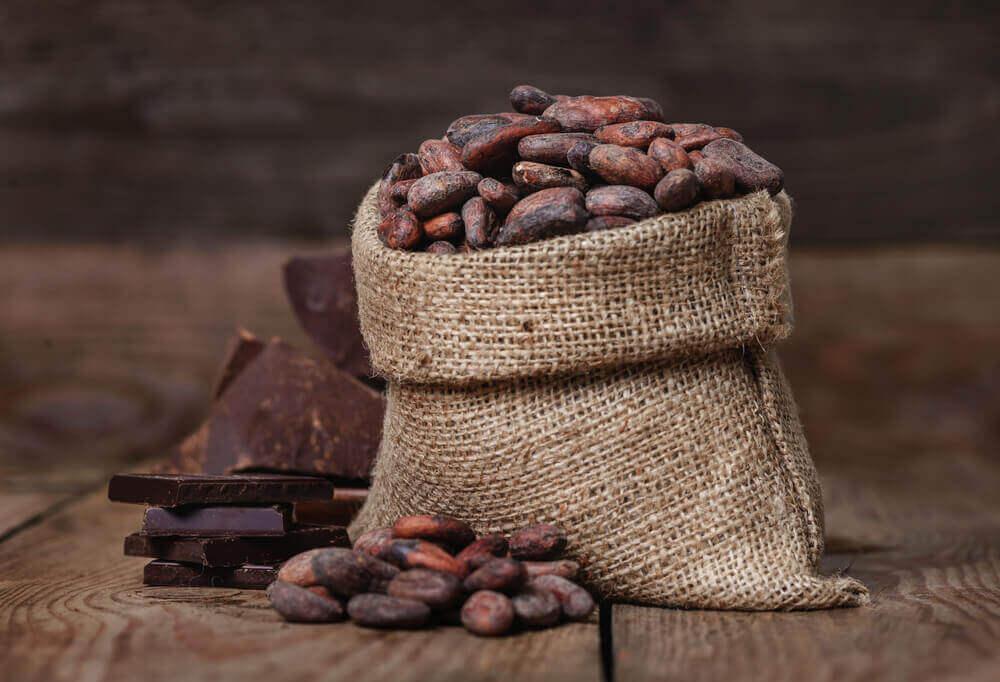 Kakaobönor och mörk choklad