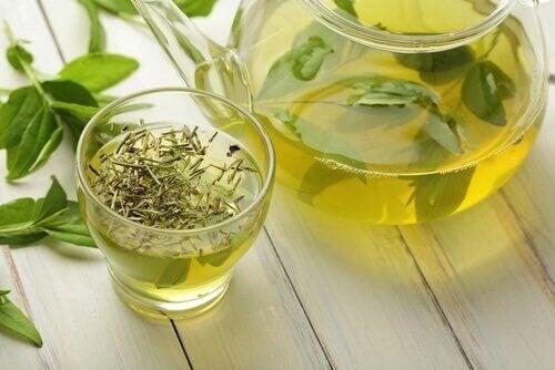 Grönt te innehållerantioxidanter