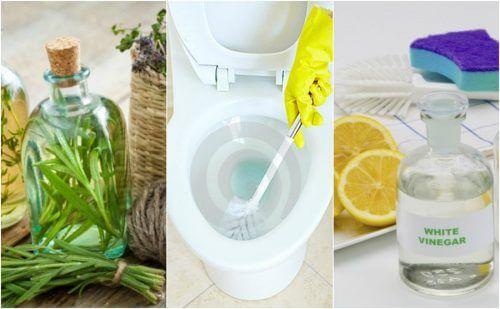 5 ekovänliga desinficeringsmedel för badrummet