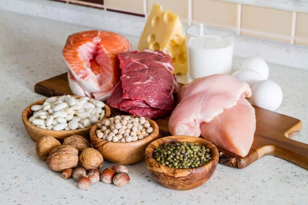 Protein och fett.