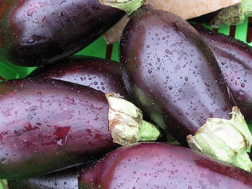 Prova på ett recept med panerad aubergine