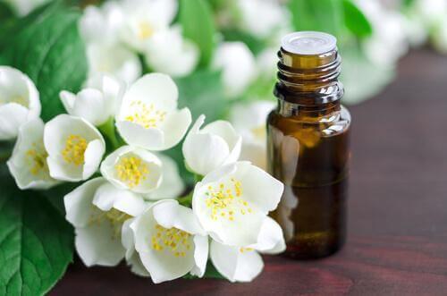 Jasminolja har utplattande egenskaper