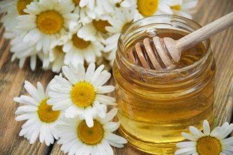 Kamomill och honung kan lindra migrän naturligt