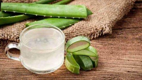Aloe vera lindrar reflux