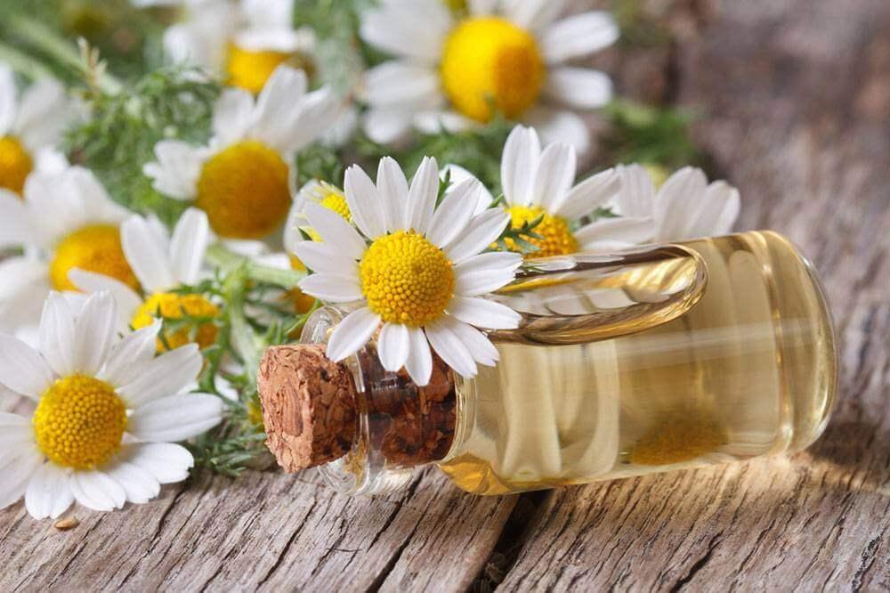 Blommor och olja.
