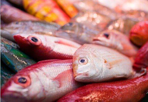 Röda fiskar.
