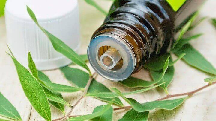 Behandla näspolyper naturligt med teträdolja