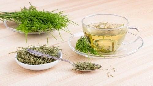 5 växtbaserade kurer för att bekämpa urininkontinens - Steg för Hälsa 241cf36cc143e