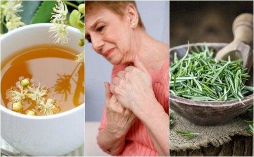 5 naturliga örtinfusioner mot artritsmärta