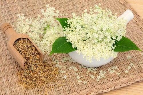 Älggräshjälper dig ta hand om din matsmältning
