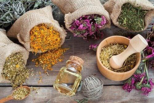 Aromatiska örter