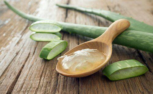 Aloe vera gel på träsked.