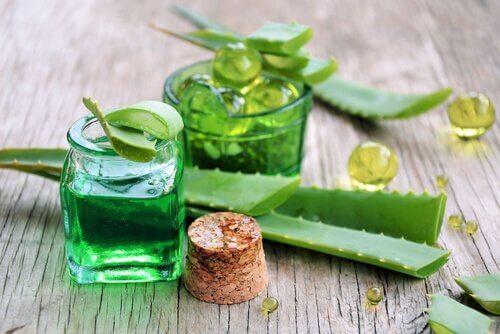 Aloe vera för skinande och silkeslent hår.