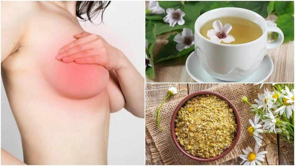 4 naturliga medel för att lindra bröstsmärta