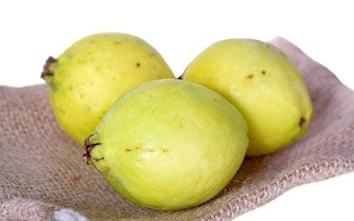 guavans otroliga egenskaper mot anemi