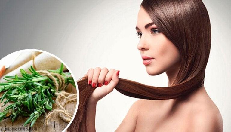 Örter och kryddor för ökad hårväxt