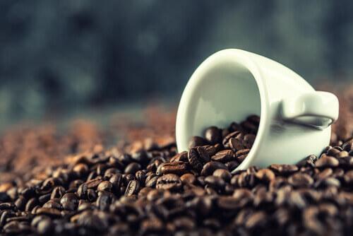 kaffe recept gelatine