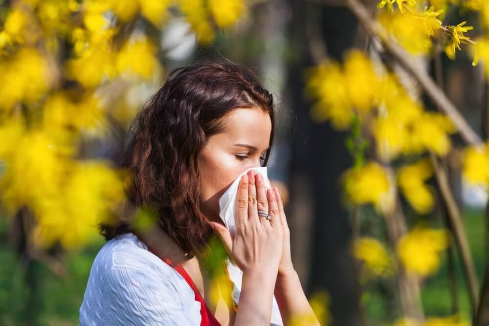 Säsongsallergier relaterade till pollen
