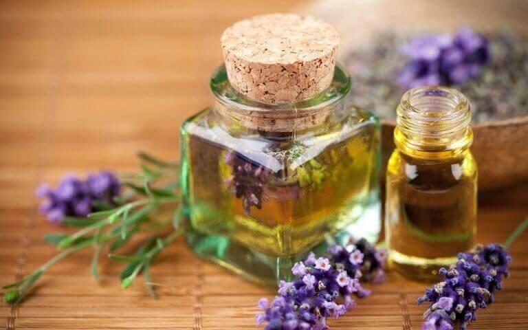 Lavendelolja i små flaskor.