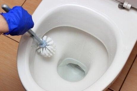 städa toaletten