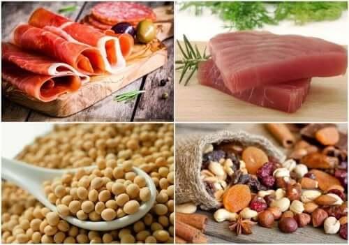 Typer av protein
