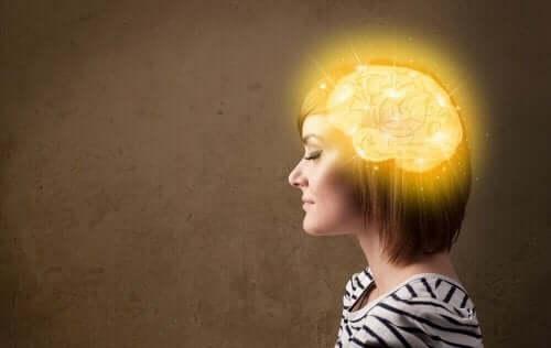 De bästa tipsen för att ha en ung och vital hjärna