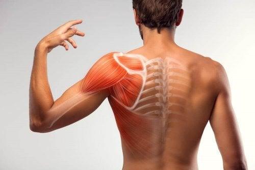 7 lösningar att göra hemma för att minska muskelspasmer