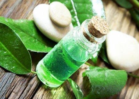 Du kan behandla en tandböld med tea tree-olja