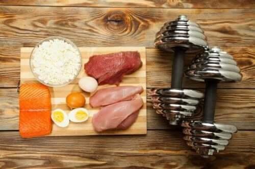 Tio livsmedel du bör äta för att få mer muskelmassa