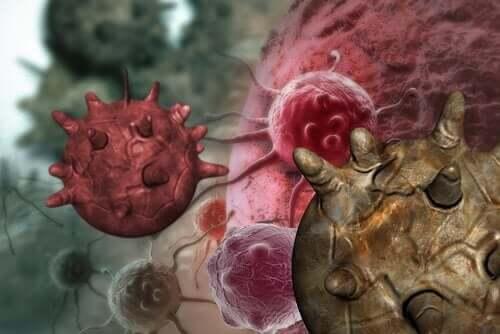 De många myterna om carcinogena livsmedel