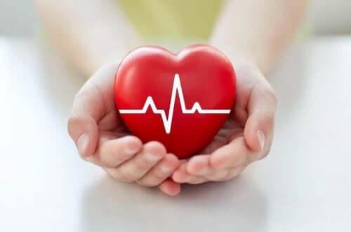 Ta hand om hjärthälsan