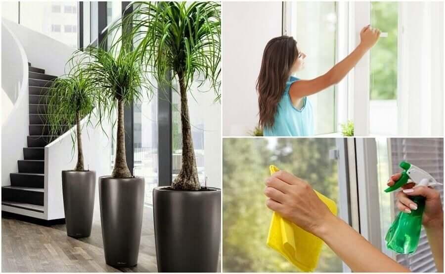 Vad du kan göra för att förbättra luftkvaliteten i ditt hem