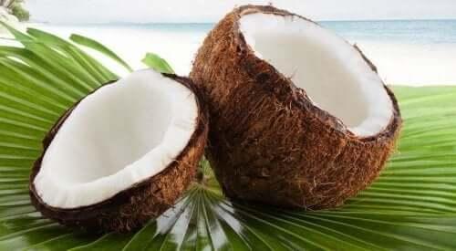 Kokosnötter på strand.