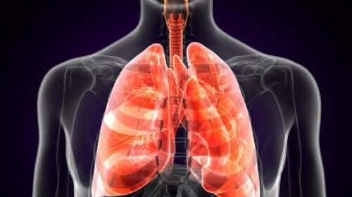 Fakta om lungpest: vad är det egentligen?
