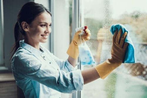 Håll insekter borta med fönsterputs