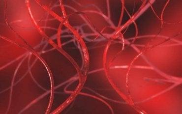 Rensa blodkärlen med fyra naturliga kurer