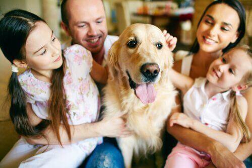 Barn vars husdjur har dött behöver stöd