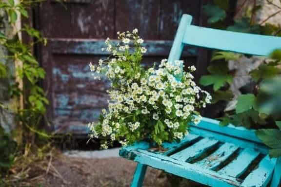 Gammal stol blir blomlåda