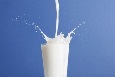 vilken mjölk är bäst