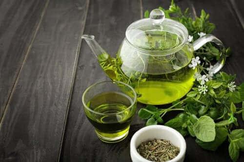 Grönt te för att få bättre blodcirkulation