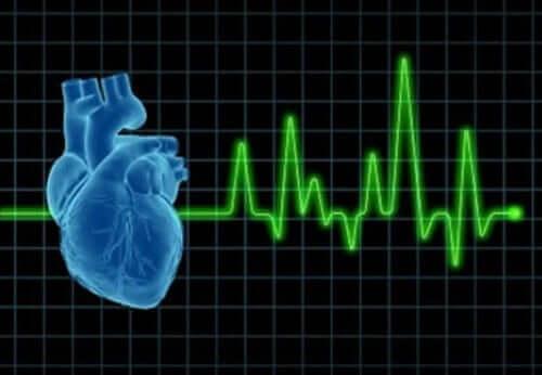 Hjärtats intervaller