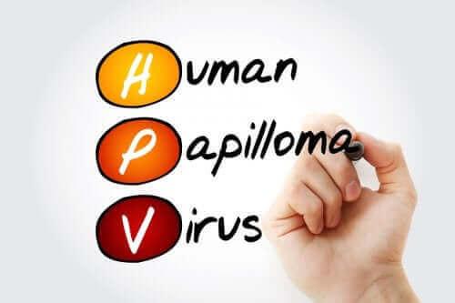 Humant papillomvirus och sex: hur funkar det?