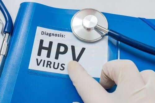 Humant papillomvirus och sex