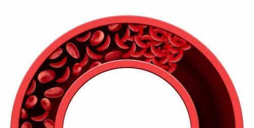 Få bättre blodcirkulation med naturliga kurer