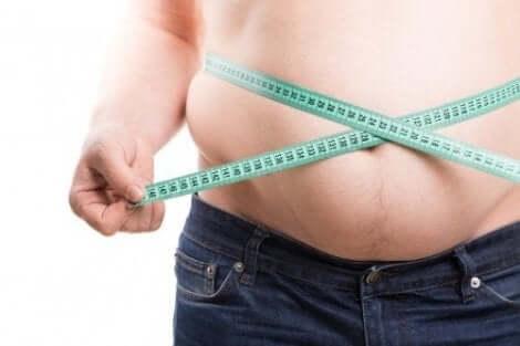Fetma är ett stort problem